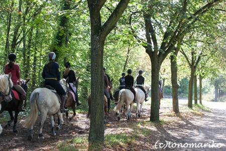 森の中の乗馬クラブ_c0024345_182424.jpg