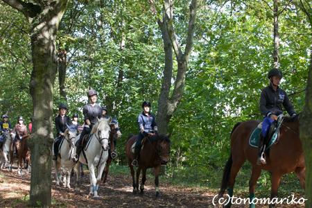森の中の乗馬クラブ_c0024345_182431.jpg