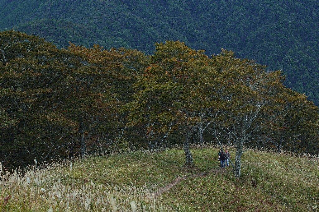 山に暮らせば_e0091879_0222632.jpg