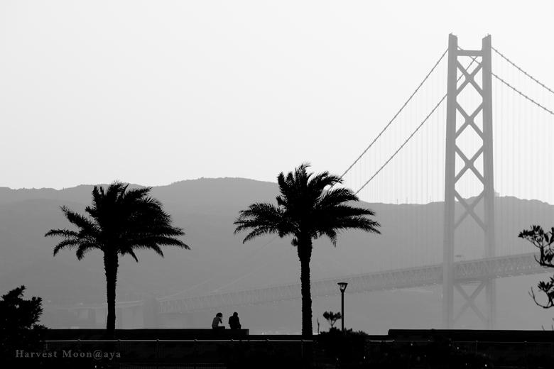 明石大橋のある景色3_b0208495_2242559.jpg