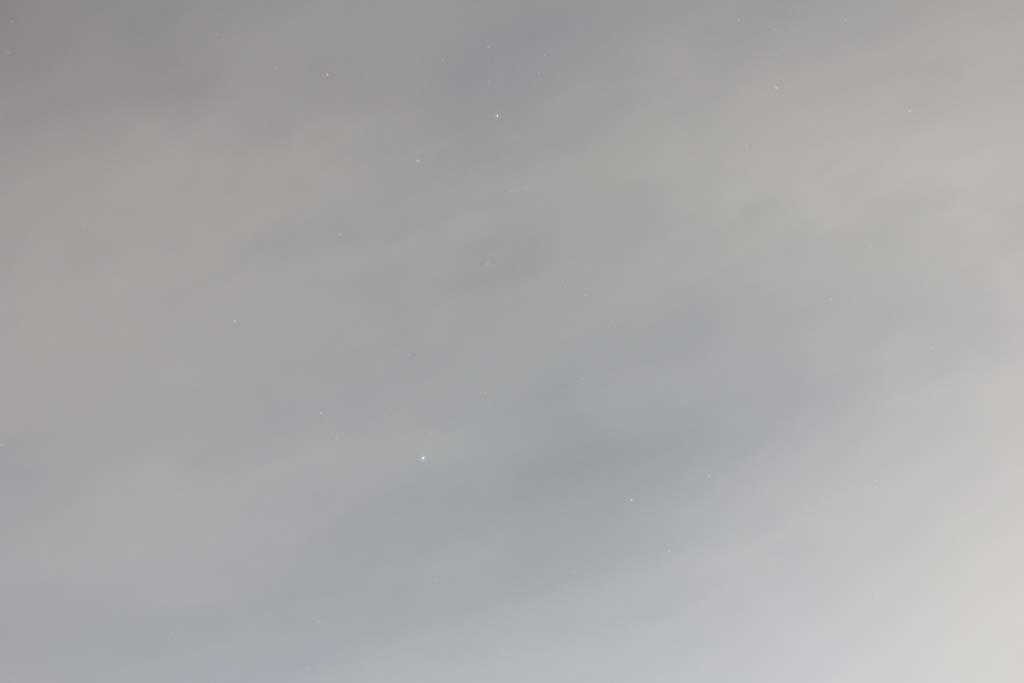 我が市で撮った91番目の鳥/今朝のカワセミ/10月りゅう座流星群_b0024798_11484935.jpg