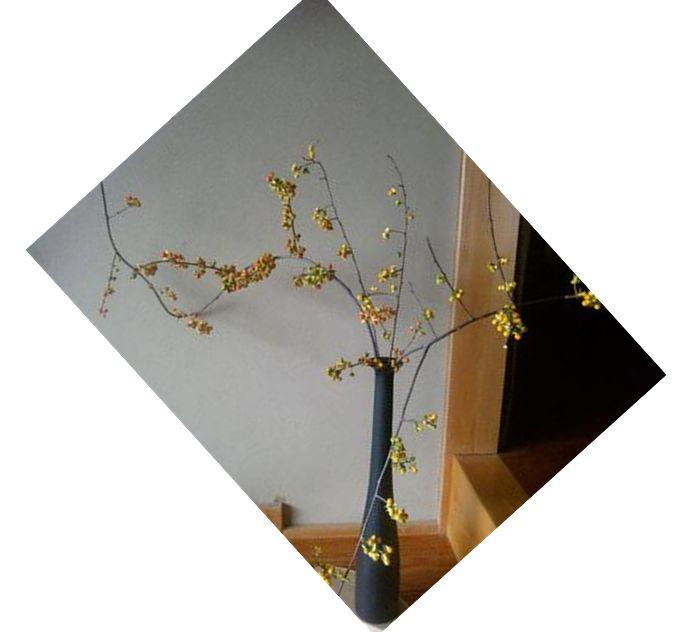 f0228619_2264236.jpg
