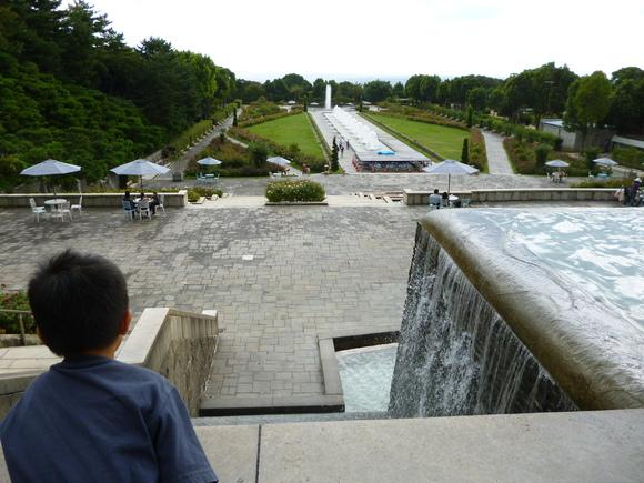 須磨離宮公園_b0215321_19331859.jpg