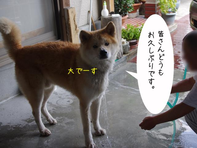 f0008935_10382364.jpg