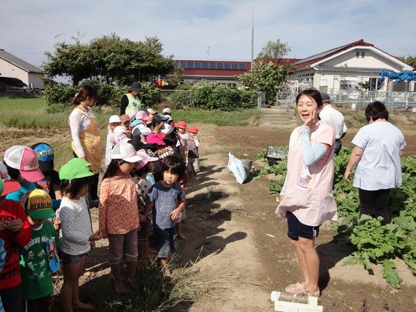 農園情報(幼児組)_a0180348_16194591.jpg