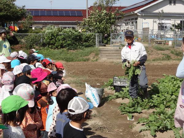 農園情報(幼児組)_a0180348_16202940.jpg