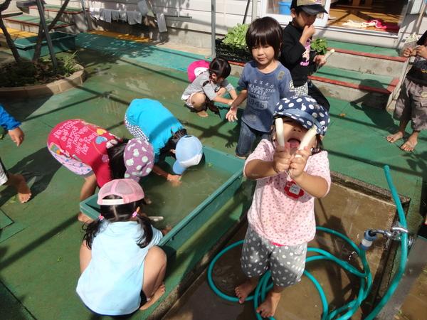 農園情報(幼児組)_a0180348_16274126.jpg