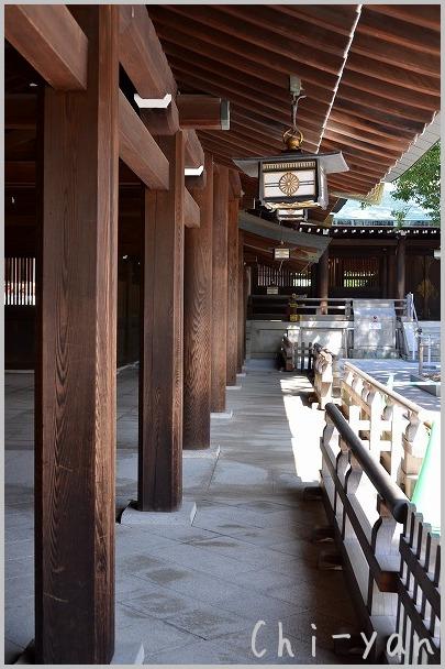 タヌキも住んでる 「明治神宮」_e0219011_18173199.jpg