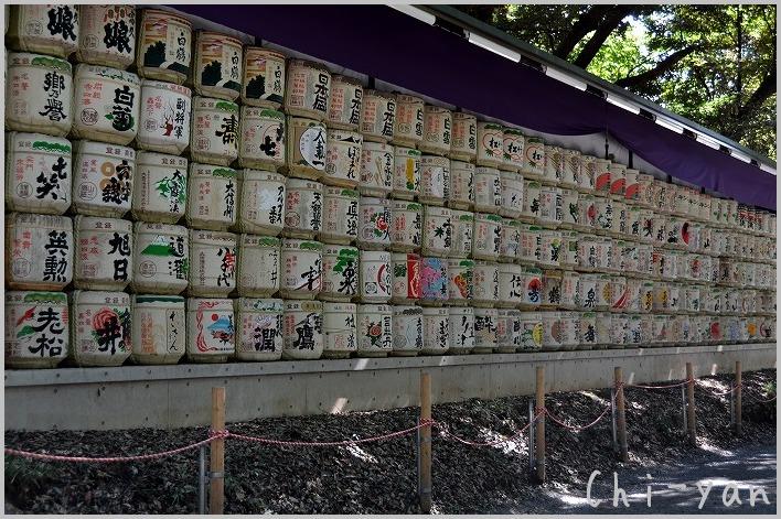 タヌキも住んでる 「明治神宮」_e0219011_1817520.jpg