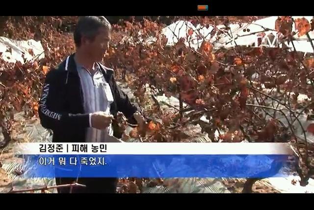 韓国のフッ化水素酸(フッ酸)ガス漏れ事故:かなり危ない悲惨な事故ですナ!_e0171614_9125414.jpg