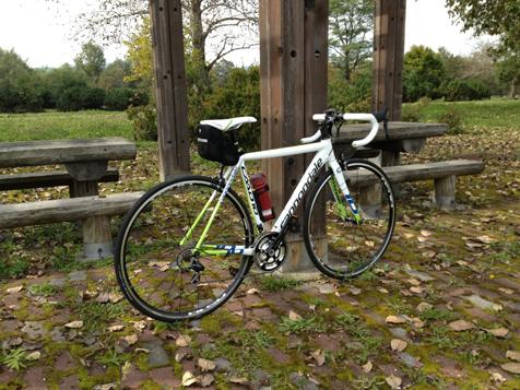 秋晴れの下、サイクリング♪_f0096216_5111018.jpg