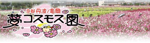 b0186959_950732.jpg