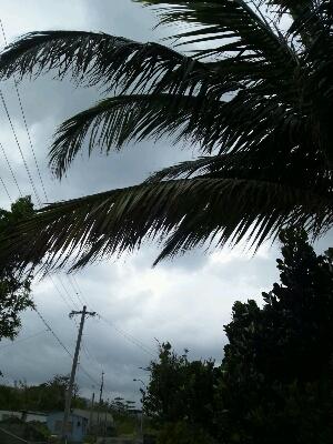 台風21号接近中_e0131462_8491044.jpg