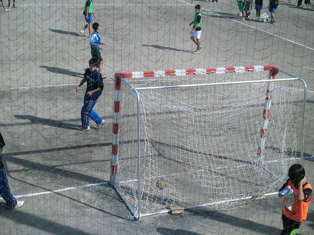 来春の全国選抜大会を目指して! 富士市スポーツ祭ハンドボール競技大会_f0141310_791421.jpg