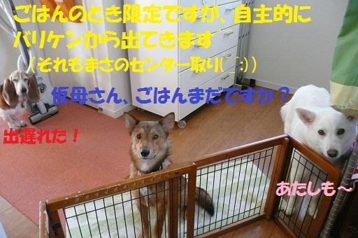 f0121712_16124139.jpg
