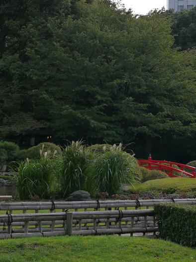 東京東ロータリークラブ卓話_a0169924_1855387.jpg
