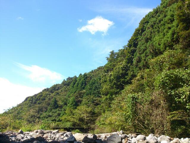 今年最後の渓流釣り@静岡_e0213248_20105753.jpg