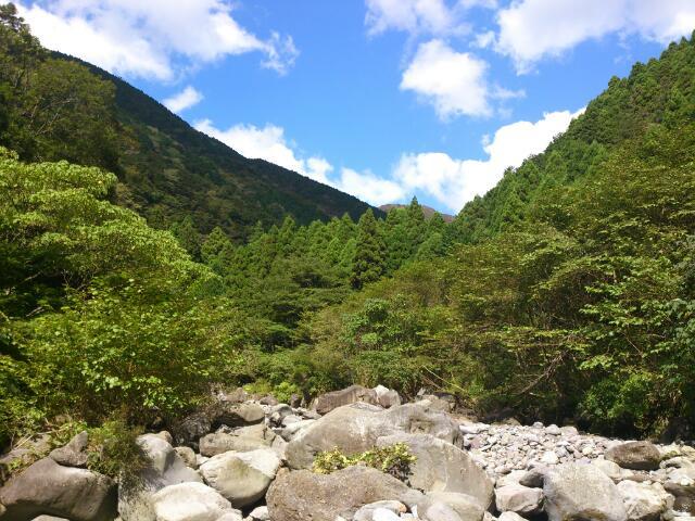 今年最後の渓流釣り@静岡_e0213248_20111852.jpg