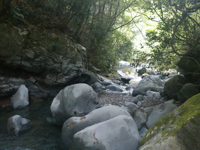 今年最後の渓流釣り@静岡_e0213248_2034830.jpg