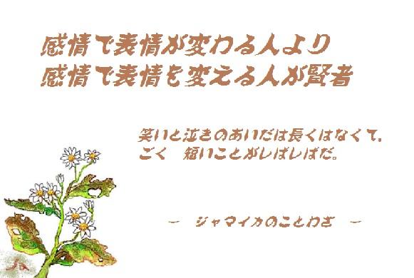 d0083472_1953331.jpg