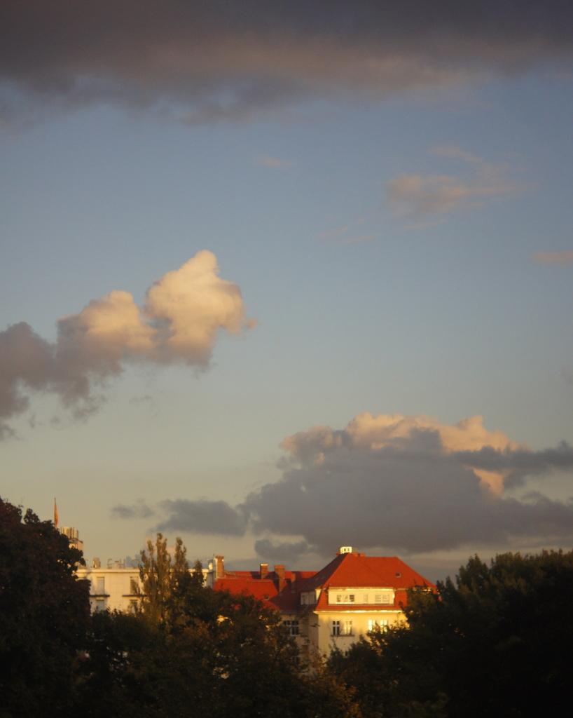 秋、朝から快晴!_c0180686_20514446.jpg