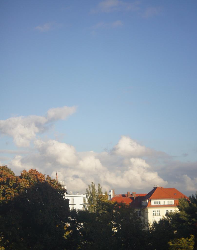 秋、朝から快晴!_c0180686_2053521.jpg
