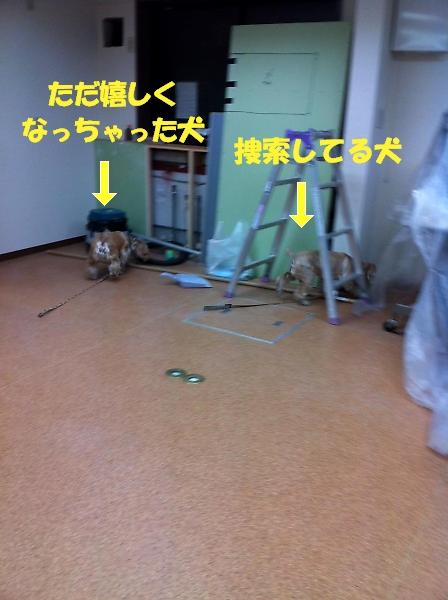 b0067012_23431164.jpg