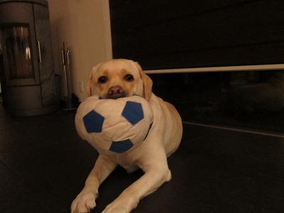 IkEAのサッカーボールが小さくなった…の巻_e0192217_9323624.jpg