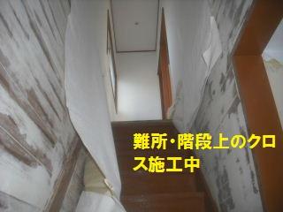 f0031037_2050841.jpg