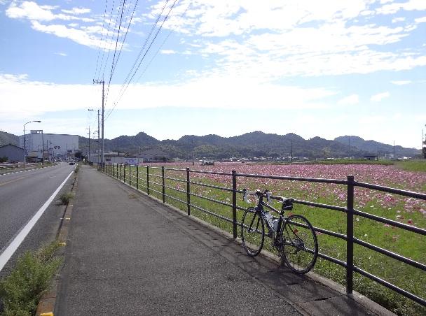 自転車からカラカラという音がしてUターン。_b0149340_21403263.jpg