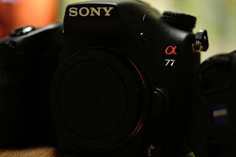 新入りカメラ♪_f0016656_02055.jpg