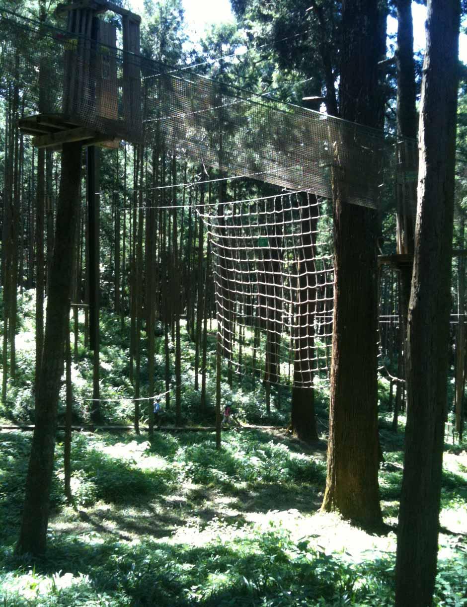箱根で遊ぶ-身長110センチ以上のファミリー向け_e0253101_17165450.jpg