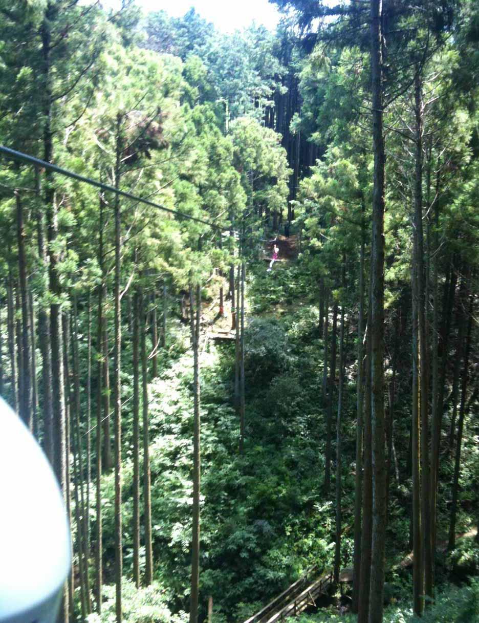 箱根で遊ぶ-身長110センチ以上のファミリー向け_e0253101_17211060.jpg