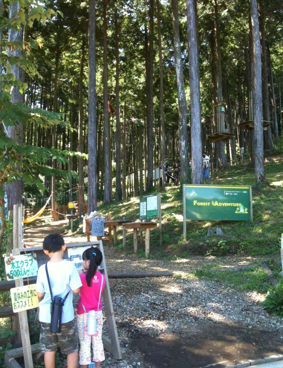 箱根で遊ぶ-身長110センチ以上のファミリー向け_e0253101_175415.jpg