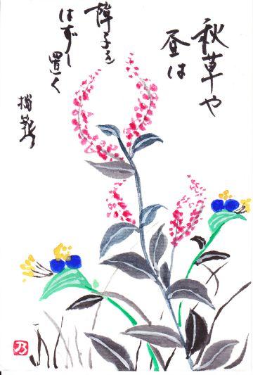 露草_a0157409_8483512.jpg