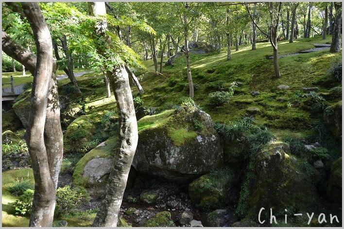 秋の箱根に_e0219011_13523039.jpg