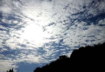 森のひととき_e0103024_112824100.jpg