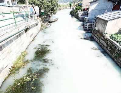 『中国の小さな村の川が白くなってしまいました』/EXPRESS.CO.UK_b0003330_20225868.jpg