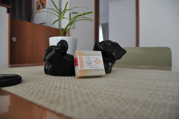 痒いぃぃぃ~~_c0117150_1624463.jpg