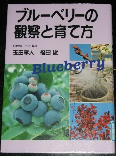 ブルーベリーの本と本の撮り方 _f0018078_1838547.jpg