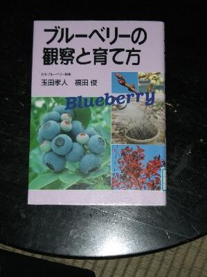 ブルーベリーの本と本の撮り方 _f0018078_18391579.jpg