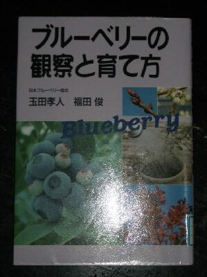 ブルーベリーの本と本の撮り方 _f0018078_1839542.jpg