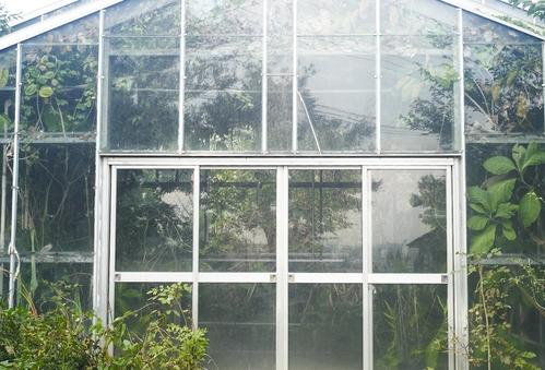 植物園へ行く_b0212922_19514822.jpg