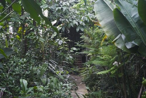 植物園へ行く_b0212922_2005927.jpg