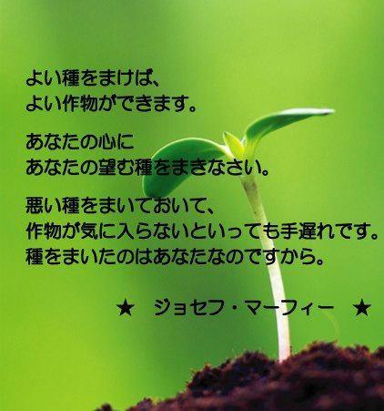 f0180726_111819100.jpg