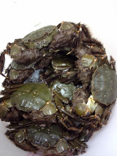 /// 秋の味覚、岸田川の「モクズ蟹」の湯で蟹をいただきました ///_f0112434_1935204.jpg