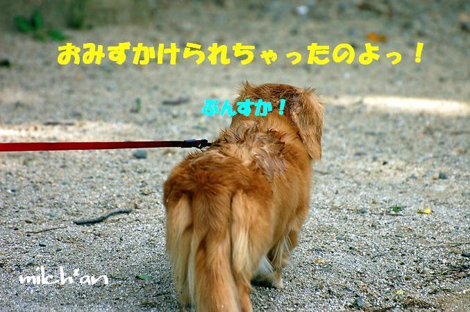 b0115642_7144339.jpg