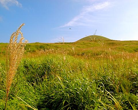 2012年9月『南九州ツチノコの旅』【5】_e0071652_14352549.jpg