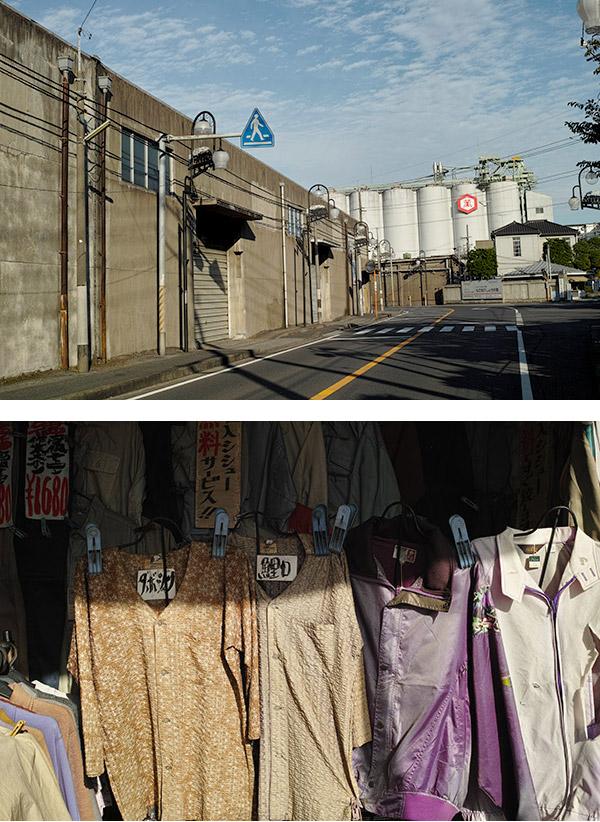 2012/10/15 七光台から野田まで:その2_b0171364_11163997.jpg