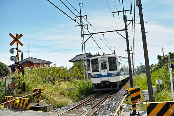 2012/10/15 七光台から野田まで:その2_b0171364_8173353.jpg